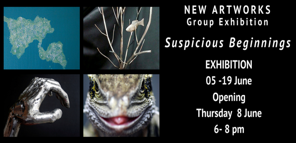 WebSlider-SuspiciousBeginingsGroupShow-June2017 copy