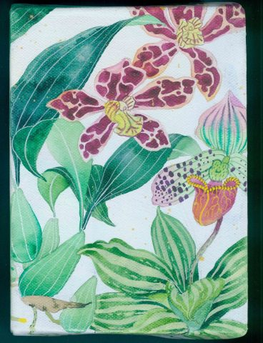 "Little garden  # 4 ""Orchids"
