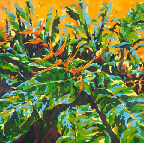 Tropic Splender