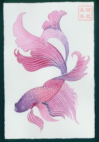 """Don't ask me why"" #6 - Siamese fighting fish series"