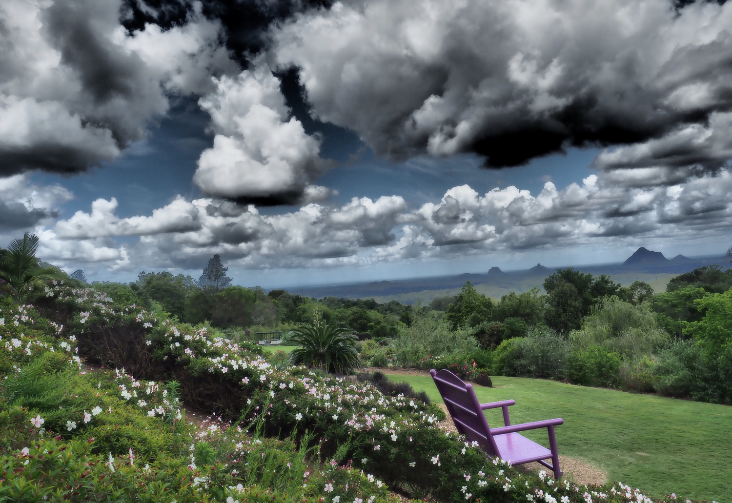 The Purple Chair (Framed)
