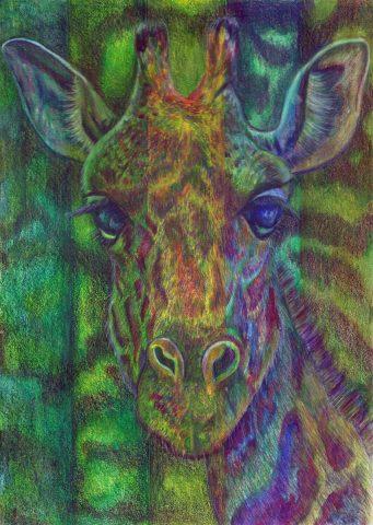 Giraffe n Green