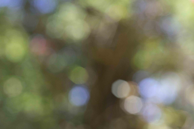 Tun Yun (Reunion) (Framed)