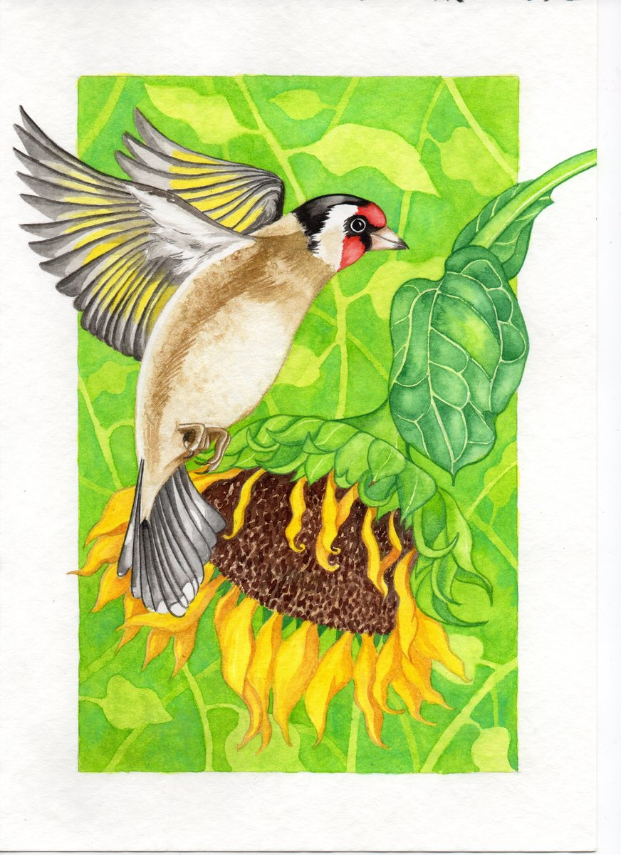Goldfinch and Sunflower Heart