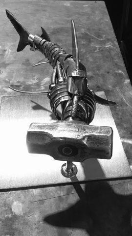 Hammer Head Shark