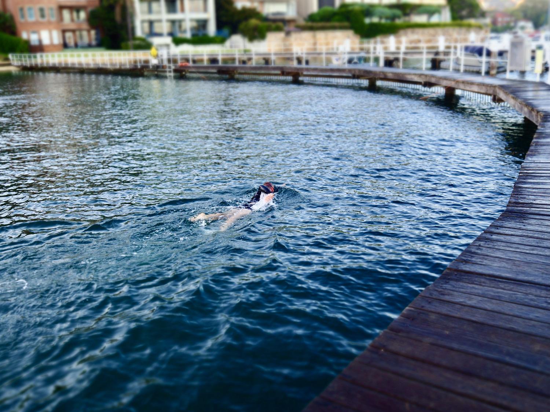 Lap swimmer
